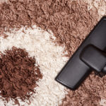 Best Vacuums For Shag Carpets